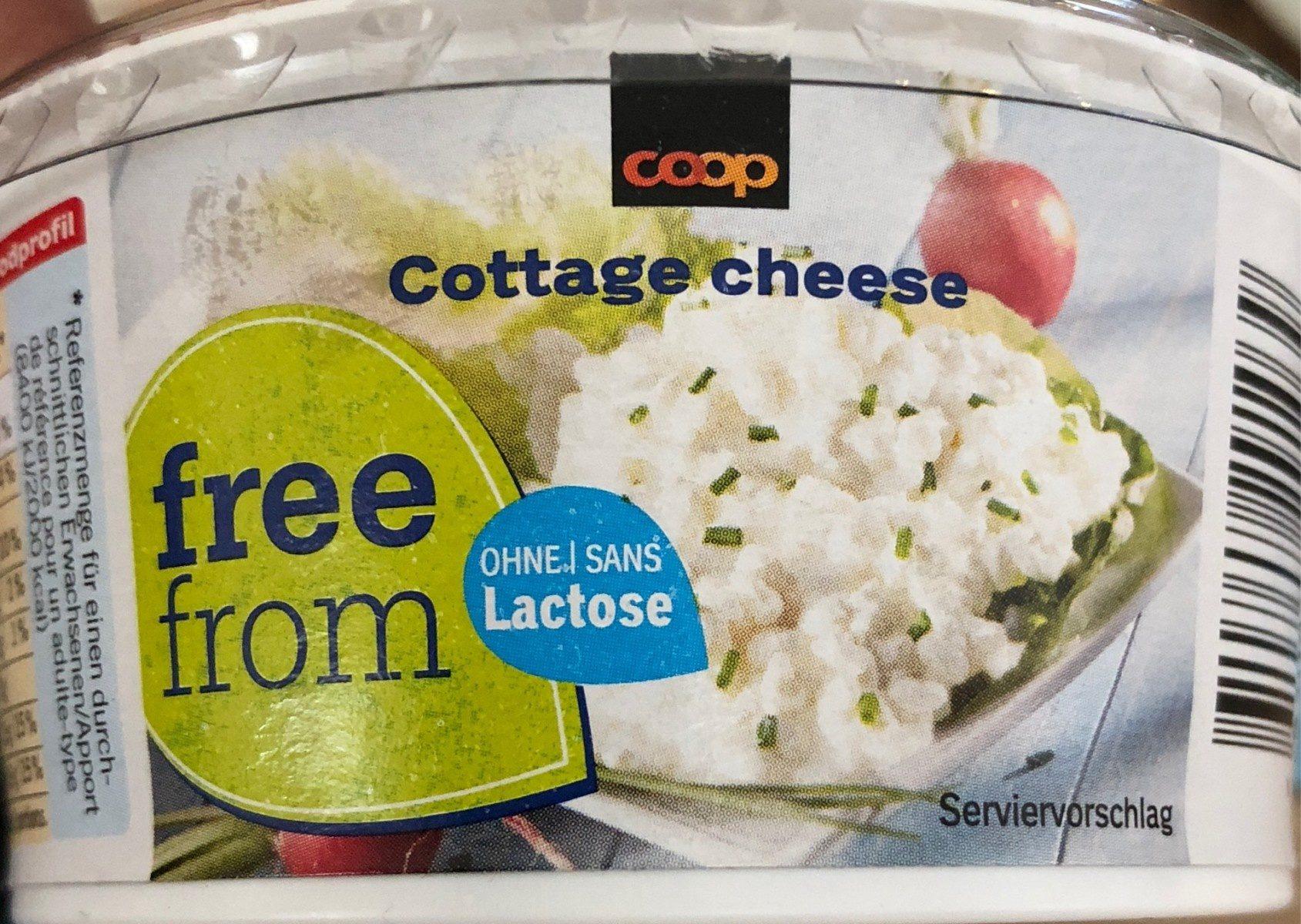 Free Form Food