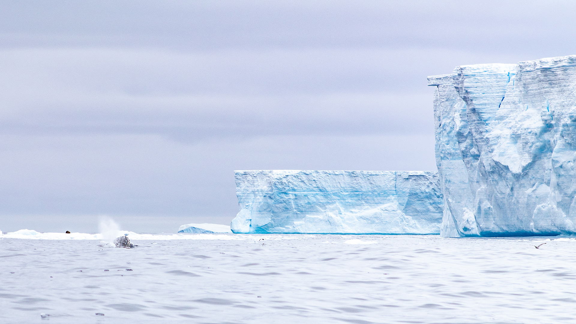 a68 iceberg