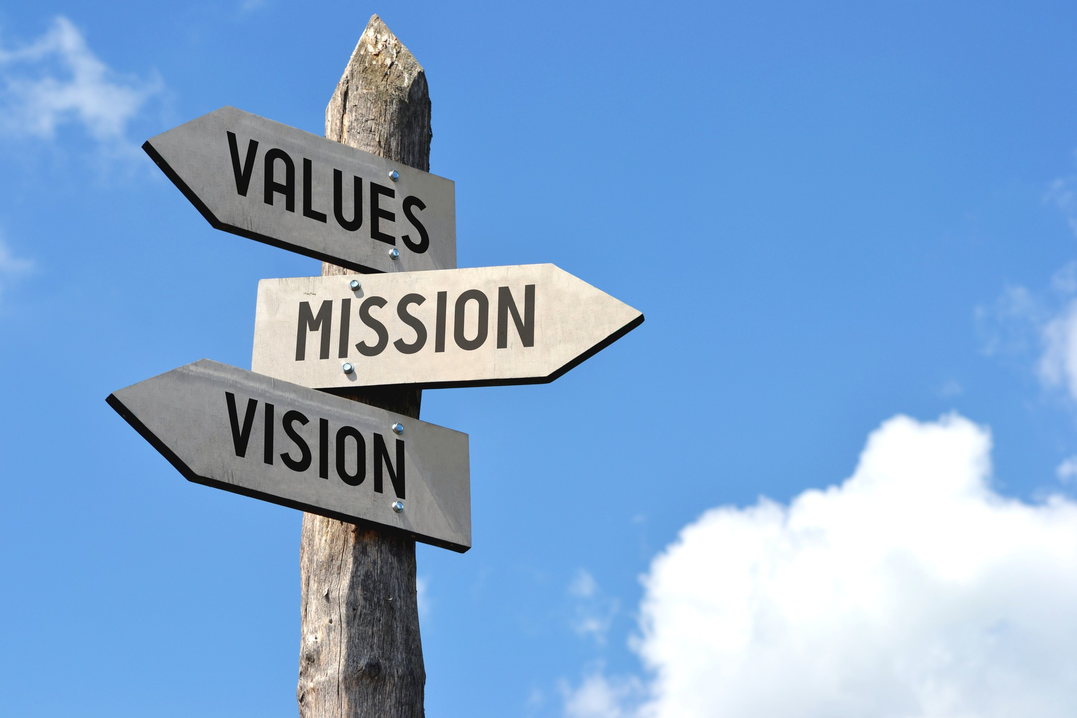 vision mission value